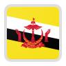 U22 Brunei