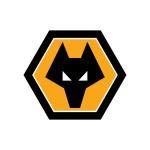 Wolverhampton Wand