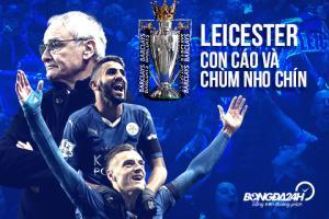 Leicester vô địch Premier League: Chuyện con cáo và chùm nho chín