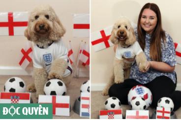 Chú chó thông minh nhất nước Anh dự đoán trận ra quân của Tam sư gặp Croatia