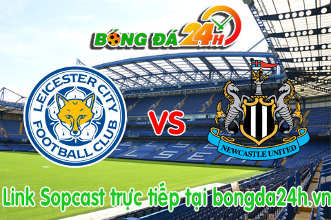 Leicester vs Newcastle hinh anh