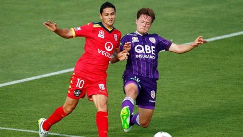 Nhan dinh Perth Glory vs Adelaide United 18h00 ngay 1811 (VDQG Australia 2016) hinh anh