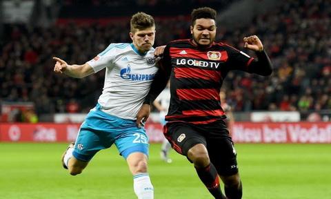 Nhan dinh Schalke vs Leverkusen 23h30 ngay 1112 (Bundesliga 201617) hinh anh