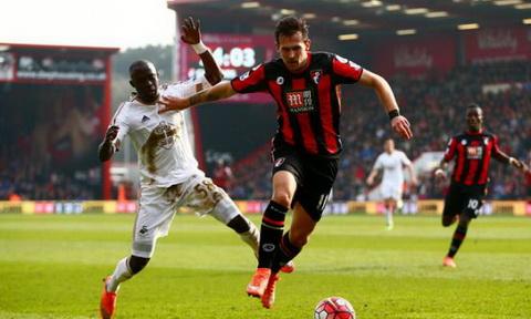 Nhan dinh Swansea vs Bournemouth 22h00 ngay 3112 (NHA 201617) hinh anh