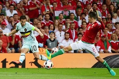 Du am Bi 4-0 Hungary Ga khong lo ti hon hinh anh