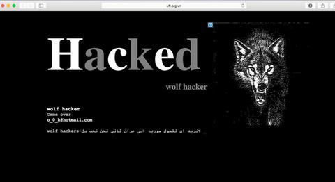 Website chinh thuc cua VFF bi hacker tan cong  hinh anh