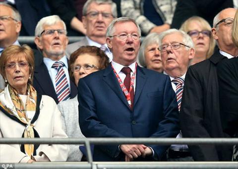 Sir Alex Ferguson ra mat phan doi Paul Scholes hinh anh