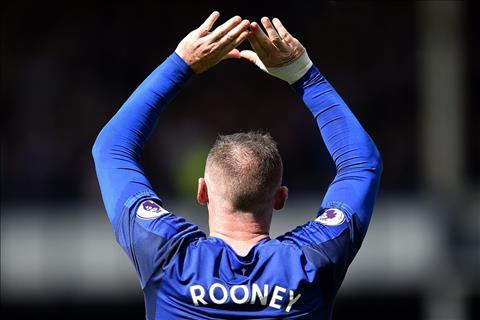 Thong ke an tuong tran Brighton 1-1 Everton hinh anh
