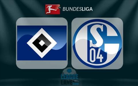 Nhan dinh Schalke vs Hamburg 21h30 ngay 1911 (Bundesliga 201718) hinh anh