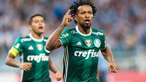 Nhan dinh Palmeiras vs Botafogo 05h00 ngay 2811 (VDQG Brazil) hinh anh
