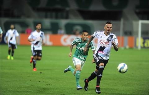 Nhan dinh Santos vs Ponte Preta 07h00 ngay 186 (VDQG Brazil) hinh anh