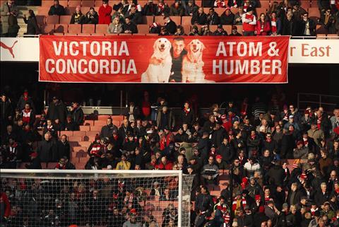 Arsenal 4-1 Crystal Palace Co hay khong Sanchez, cuoc song van phai tiep dien hinh anh 3