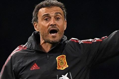 HLV Luis Enrique ca ngợi Gareth Southgate trước màn tái đấu hình ảnh