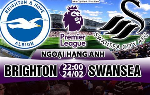 Nhan dinh Brighton vs Swansea 22h00 ngay 242 (Premier League 201718) hinh anh