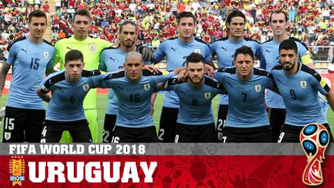 Lịch thi đấu đội tuyển Uruguay tại World Cup 2018, LTĐ World Cup hình ảnh