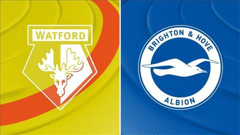 Nhận định Watford vs Brighton 21h00 ngày 118 Premier League 2019 hình ảnh