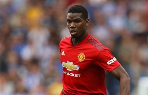 Sir Alex Ferguson sẽ tống cổ tiền vệ Pogba của MU nếu còn tại vị hình ảnh