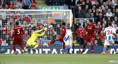 Dư âm Liverpool vs Brighton Klopp cuối cùng cũng biết trùm chăn hình ảnh