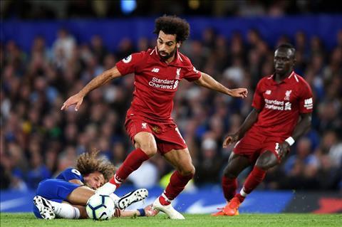 Salah suy giam phong do