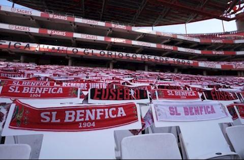2 cầu thủ Benfica nhập viện vì bị NHM tấn công hình ảnh