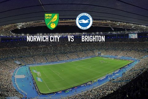 Norwich vs Brighton 18h30 ngày 47 Premier League 201920 hình ảnh