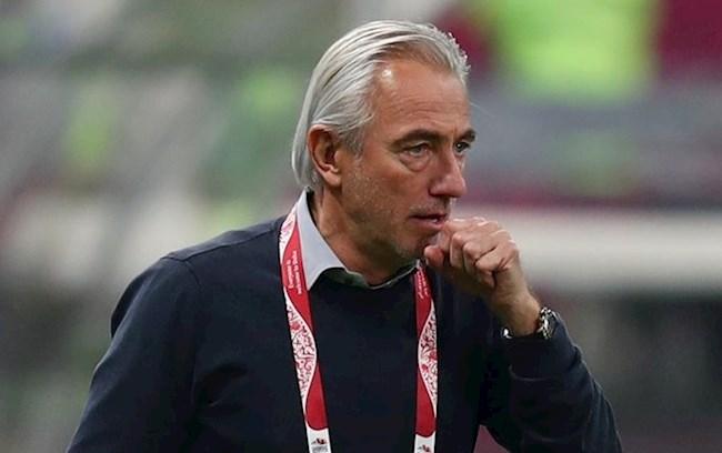 HLV Bert Van Marwijk UAE