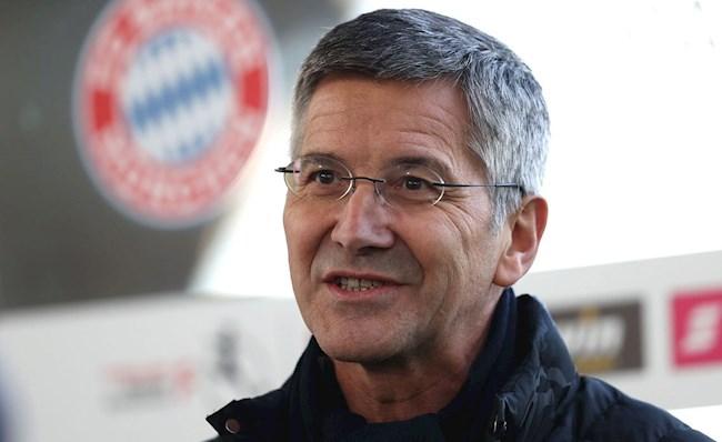Hainer Bayern