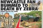 CĐV Newcastle bị ngựa vằn châu Phi... tấn công tình cảm đến chết