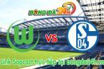 Link sopcast Wolfsburg vs Schalke 04 (22h30-19/04)
