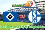 Link sopcast Hamburger vs Schalke 04 (20h30-23/05)