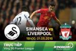 TRỰC TIẾP Swansea vs Liverpool vòng 36 Premier League 2015/2016 18h00 ngày 1/5