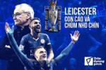 Leicester vo dich Premier League: Chuyen con cao va chum nho chin