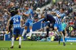 Tong hop: Brighton 1-1 Everton (Vong 8 NHA 2017/18)