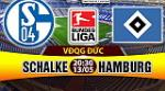 Nhan dinh Schalke vs Hamburg 20h30 ngay 13/5 (Bundesliga 2016/17)