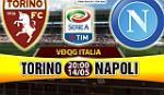 Nhan dinh Torino vs Napoli 20h00 ngay 14/5 (Serie A 2016/17)
