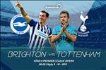 Nhan dinh Brighton vs Tottenham (18h30 ngay 5/10): Lang yen duoi vuc sau