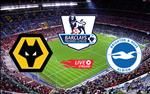 Nhan dinh bong da Wolves vs Brighton 22h00 ngay 7/3 (Premier League 2019/20)