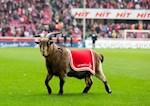 Đội bóng Đức nhận lệnh cấm oái oăm ngày Bundesliga trở lại